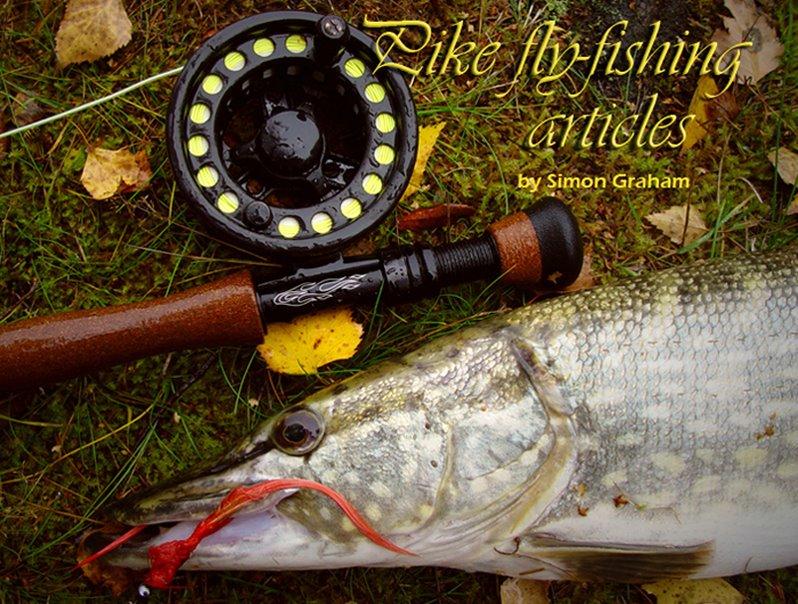 Pike and rod closeup5