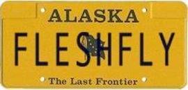 Fleshflyplate