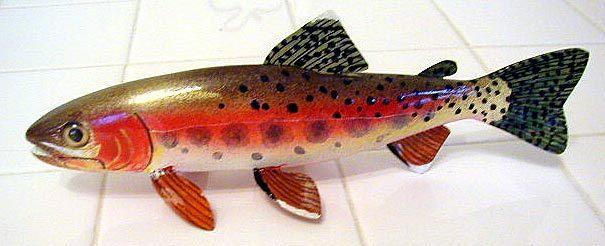 Golden_trout_600a