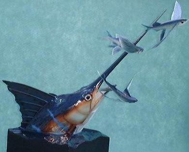 Marlin2