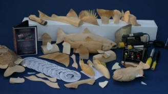 Fish_carving_fin_carving1_course
