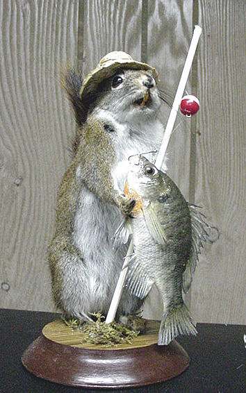 Squirrelfishermanb
