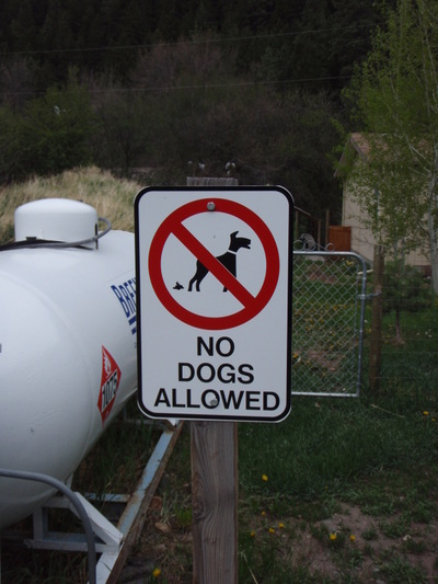 No_dogs_allowed_2