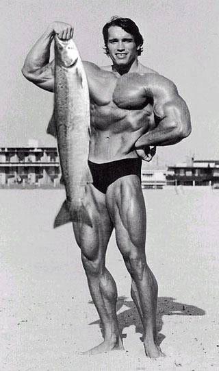 Arnold_fish_2