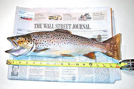 Wall_st_journal_fly_fishing
