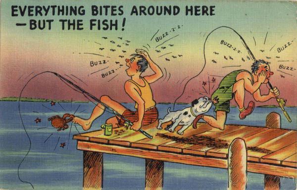 Fishingeverythingbitesaroundherebut