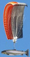 Fishparachute